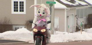 Il coniglio pasquale in moto