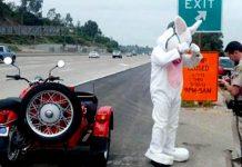 Multa per il coniglio pasquale