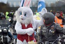 Il coniglio pasquale motociclista