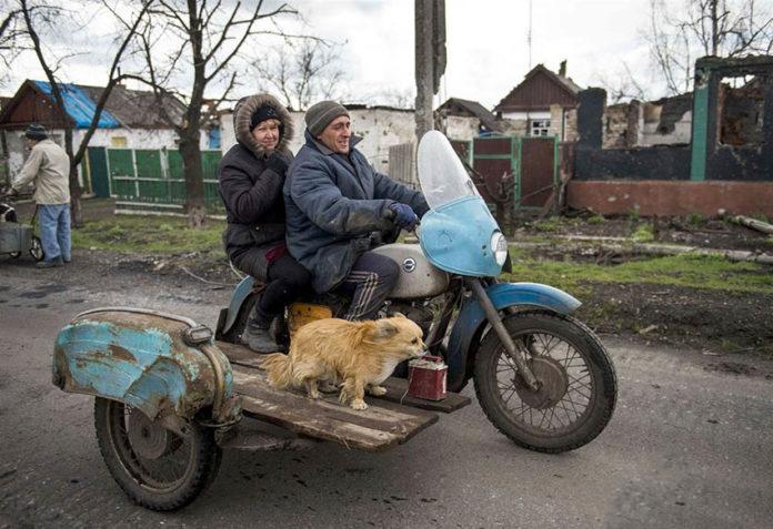 Un cane trasportato con una moto
