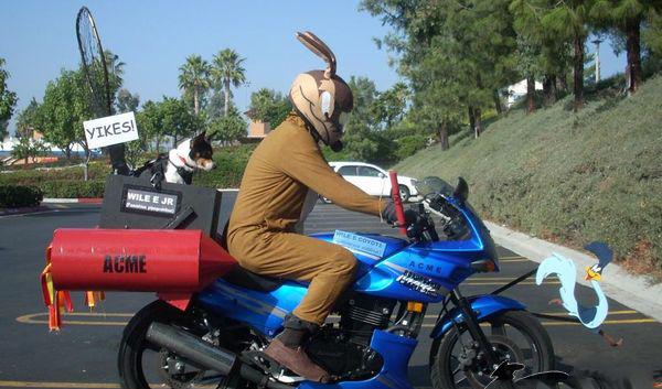 Le moto di bugs bunny