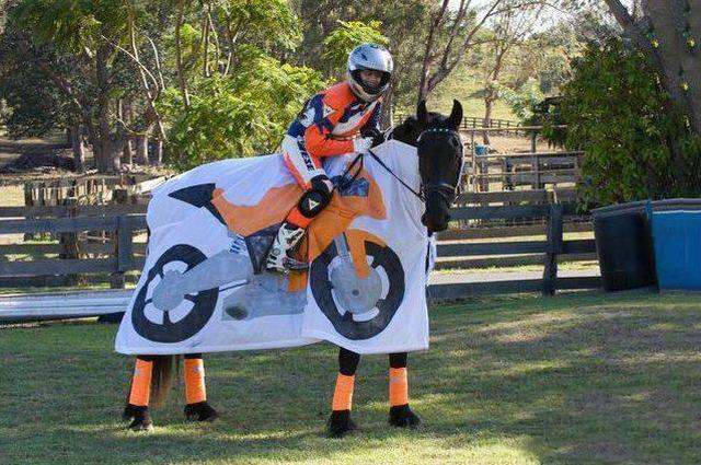 Un vero cavallo da corsa, per il motociclista fanatico amante dei cavalli.
