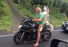 Uscire la domenica con il cane, lo stai facendo nel modo giusto.