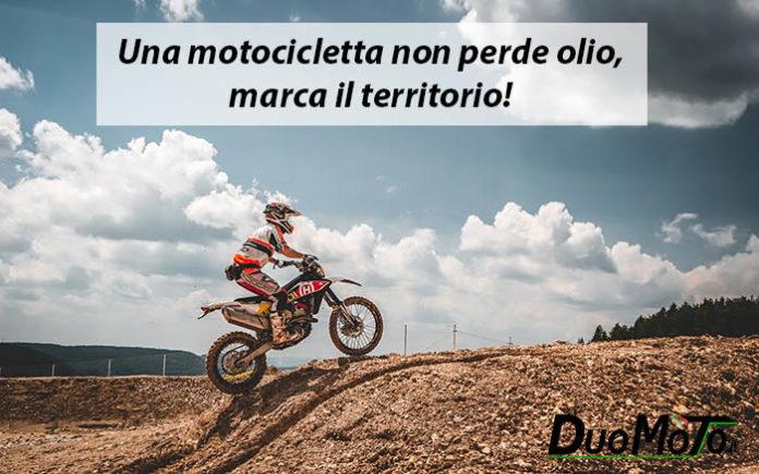Frasi Divertenti - Un motociclista non perde olio, marca il territorio