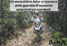 Aforismi in Viaggio - Un motociclista felice si riconosce dalla quantità di moscerini spiaccicati sui suoi denti
